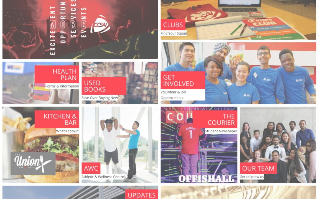 A screen shot of the CCSAI website